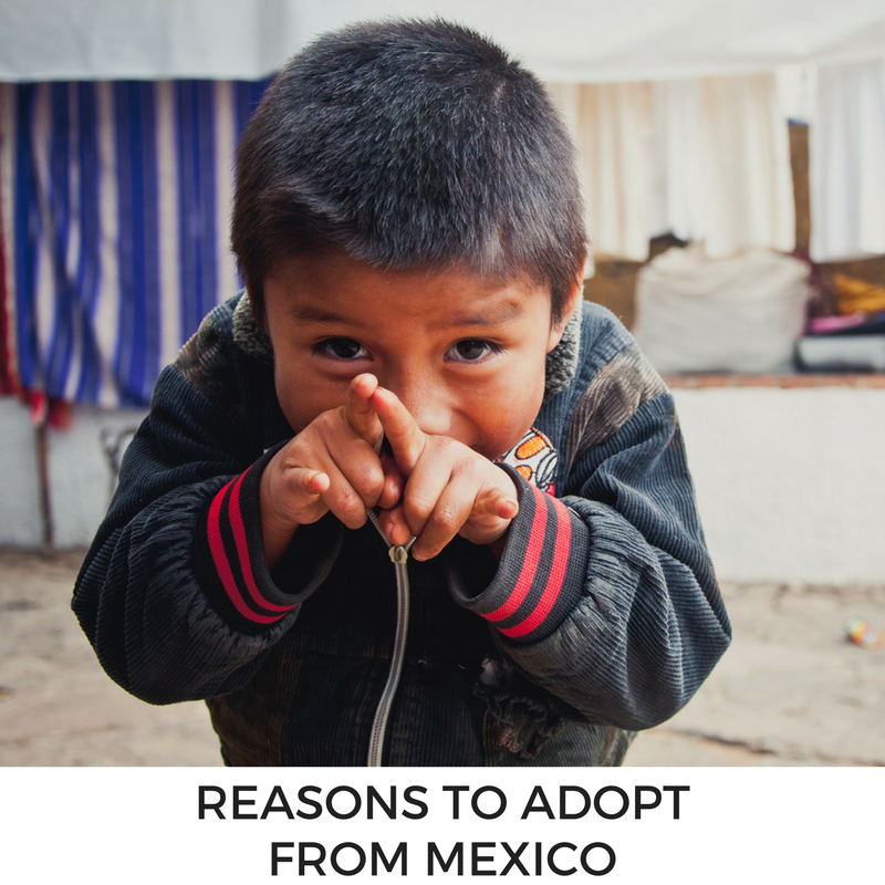 Reasons to Adopt from Mexico